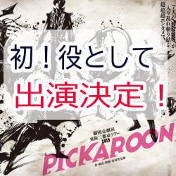 pickaroon
