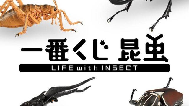 一番くじ昆虫